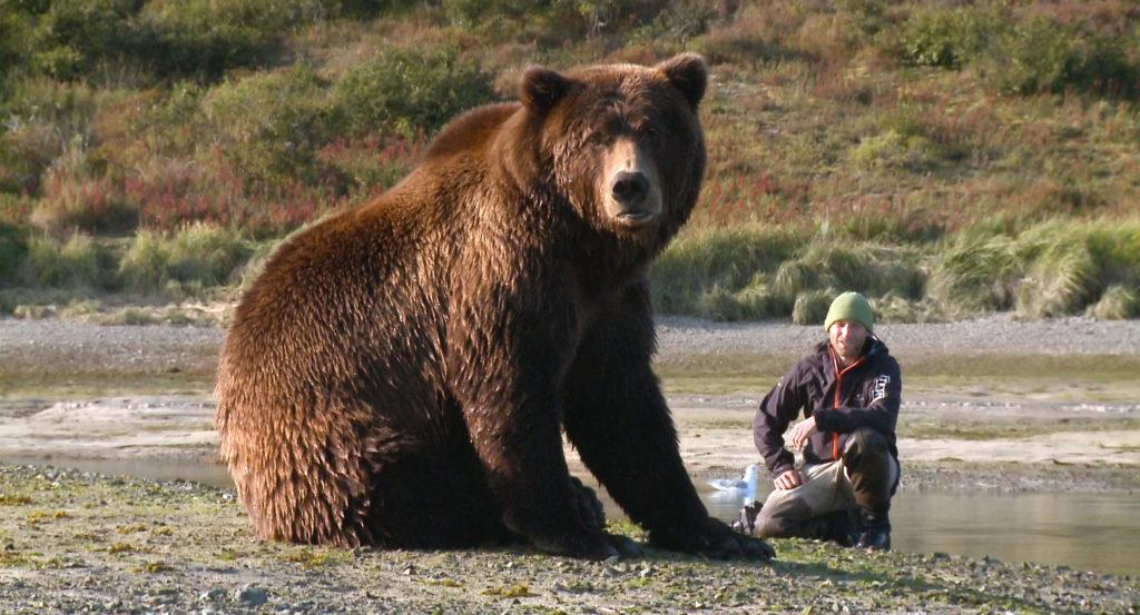 Kinostart - Der Bär in mir