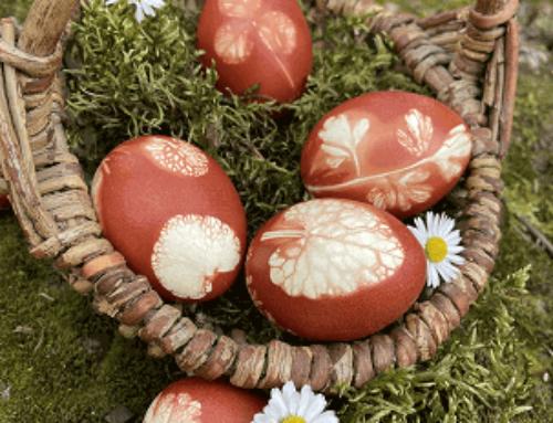 Ostereier färben – natürlicher geht's nicht!